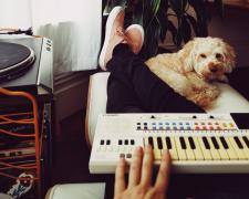 A dog and a Casio Synth